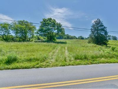 Johnson City Residential Lots & Land For Sale: TBD Old Boones Creek Rd.