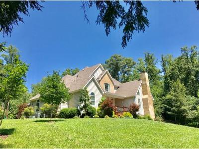 Jonesborough TN Single Family Home For Sale: $479,850
