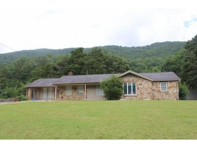 Rogersville Single Family Home For Sale: 1365 Poor Valley Road