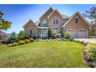 Blountville Single Family Home For Sale: 141 Sugarcane Lane