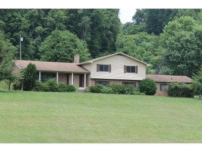 Bristol Single Family Home For Sale: 6930 Gate City Highway