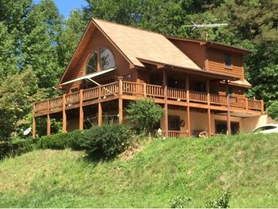 Roan Mountain Single Family Home For Sale: 269 Blue Grass Rd.