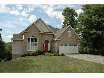 Blountville Single Family Home For Sale: 103 Polo Drive