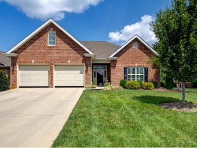 Johnson City Single Family Home For Sale: 1053 Waterbrooke