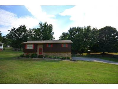 Unicoi Single Family Home For Sale: 110 Meadowstone Dr