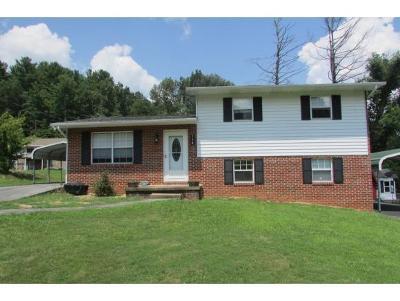 Hampton Single Family Home For Sale: 114 Mountain View Circle