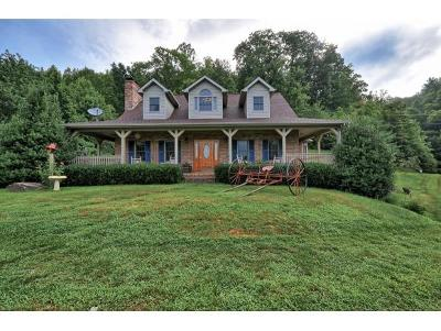 Flag Pond Single Family Home For Sale: 242 Little Branch Road