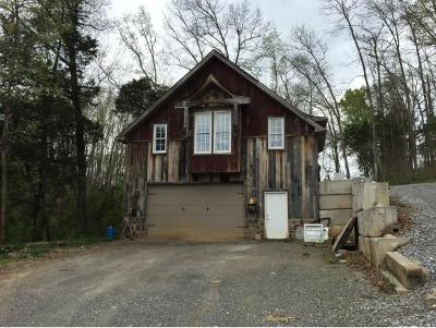 Johnson City Single Family Home For Sale: 372A Boring Chapel Rd.