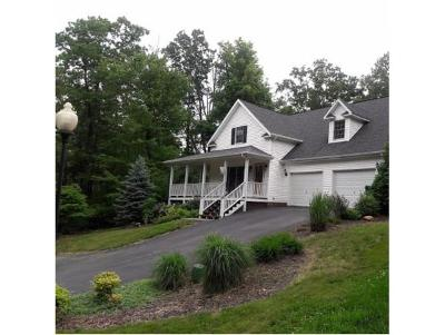 Unicoi Single Family Home For Sale: 113 Mountain Laurel Court