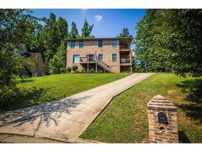 Johnson City Single Family Home For Sale: 102 Water Oak Court