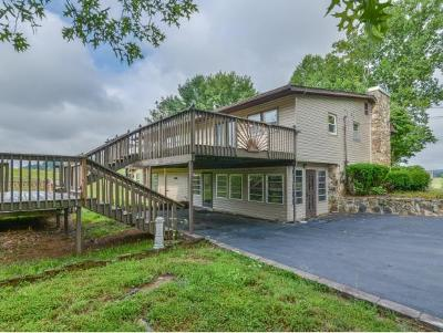 Johnson City Single Family Home For Sale: 594 Buckingham Rd.