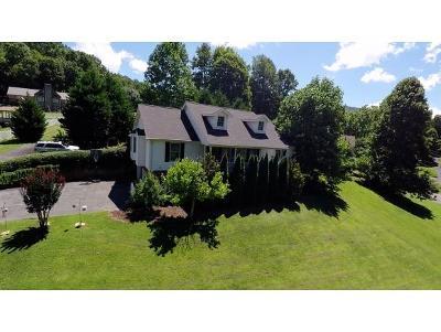 Unicoi Single Family Home For Sale: 163 Springbrook Dr