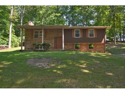 Blountville Single Family Home For Sale: 568 Pleasant Hill Rd.