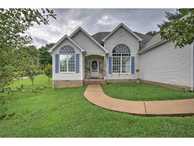 Johnson City Single Family Home For Sale: 600 W Mountain View Road