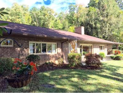 Bristol Single Family Home For Sale: 528 Vance Drive