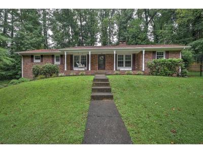 Elizabethton Single Family Home For Sale: 608 McClellan Circle