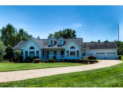 Kingsport Single Family Home For Sale: 1024 South Page Place