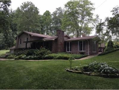 Mountain City Single Family Home For Sale: 1742 Berry Branch Road