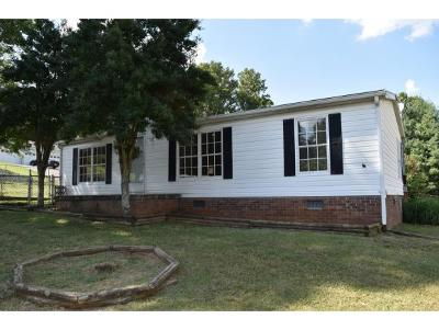 Johnson City Single Family Home For Sale: 106 Lillian Lane