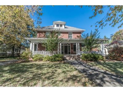 Johnson City Single Family Home For Sale: 1006 Southwest