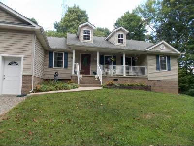 Damascus, Bristol, Bristol Va City Single Family Home For Sale: 219 Wallace Pike