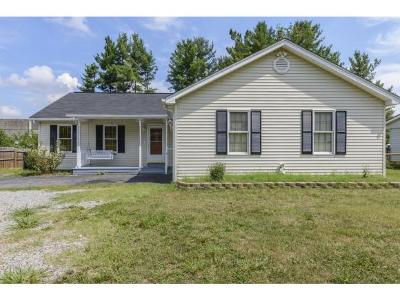 Damascus, Bristol, Bristol Va City Single Family Home For Sale: 216 Suncrest Dr.