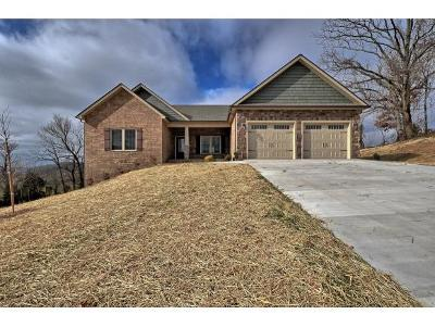 Gray Single Family Home For Sale: 1133 Little Shadden Way