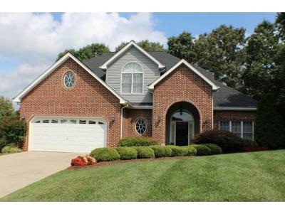 Blountville Single Family Home For Sale: 304 Southridge Drive