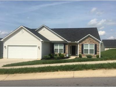 Johnson City Single Family Home For Sale: 1432 Hammett Rd