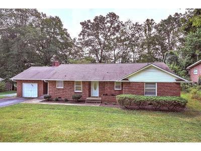 Johnson City Single Family Home For Sale: 906 Echo Lane