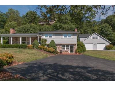 Bristol Single Family Home For Sale: 400 Knob Hill Drive