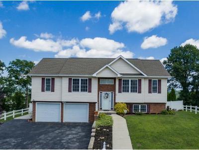 Johnson City Single Family Home For Sale: 30 Taylor Ridge Ct
