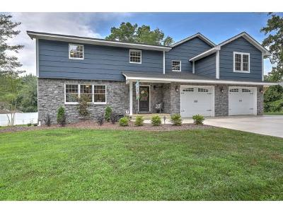 Elizabethton Single Family Home For Sale: 602 Ridgefield Rd