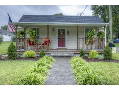 Damascus, Bristol, Bristol Va City Single Family Home For Sale: 1801 King Mill Pike