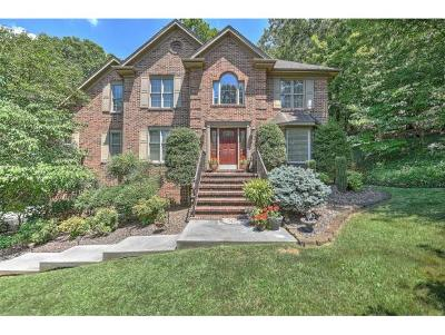 Kingsport Single Family Home For Sale: 1933 Fleetwood