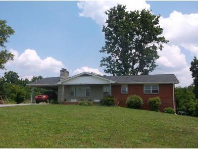 Johnson City Single Family Home For Sale: 272 Lynn Road
