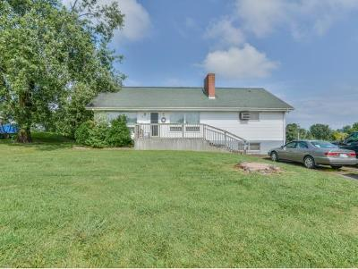 Gray Single Family Home For Sale: 229 Old Stage Road