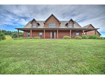 Blountville Single Family Home For Sale: 190 Spurgeon Lane