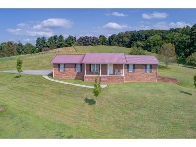 Johnson City Single Family Home For Sale: 160 Stanley Road