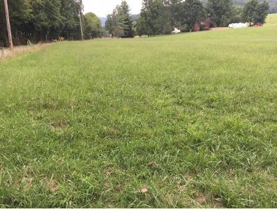 Johnson City Residential Lots & Land For Sale: 690 Laurels Road