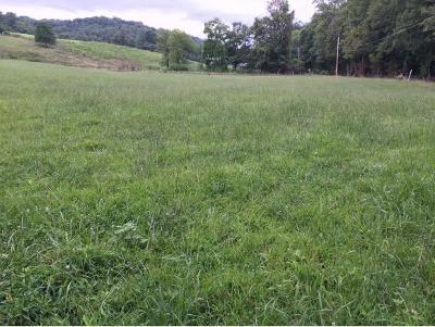 Johnson City Residential Lots & Land For Sale: 686 Laurels Road