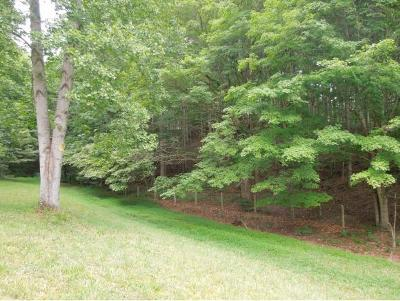 Unicoi Residential Lots & Land For Sale: TBD Pleasant Hill Drive