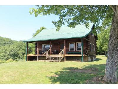 Mountain City Single Family Home For Sale: 586 Crowder