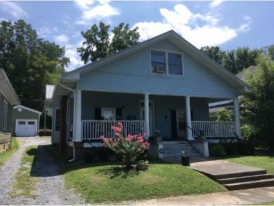 Johnson City Multi Family Home For Sale: 311 W Maple