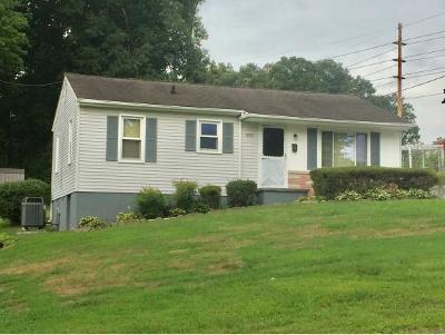 Johnson City Single Family Home For Sale: 1005 N. Barton