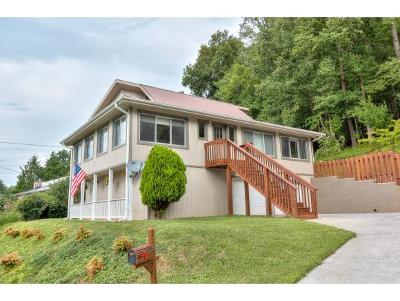Elizabethton Single Family Home For Sale: 516 Jena Beth Dr