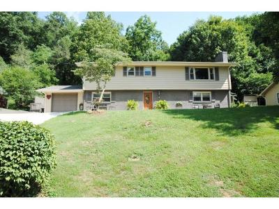 Damascus, Bristol, Bristol Va City Single Family Home For Sale: 415 Santa Monica Rd.