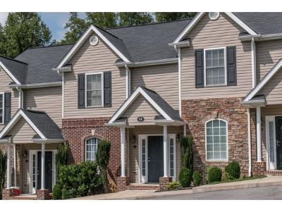 Damascus, Bristol, Bristol Va City Condo/Townhouse For Sale: 98 Montvale Drive #2