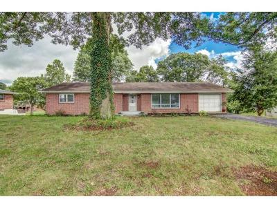 Damascus, Bristol, Bristol Va City Single Family Home For Sale: 265 Sherwood