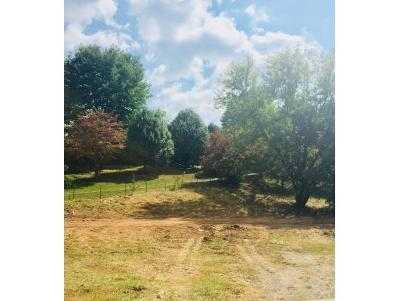 Washington-Tn County Residential Lots & Land For Sale: 2376 Hwy 81 S